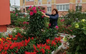 Костромичам открыли главный секрет красивых дворов